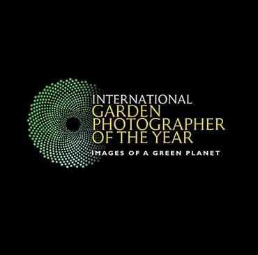 Gartenfotografie, Gartenfotograf, Porträtfotografie, Porträtfotograf, Fotograf, Fotografie, Werbefoto, Werbefotograf, Fotoproduktion, Interior fotograf, Interiourfotografie, professioneller Fotograf, Awardwinning, award,